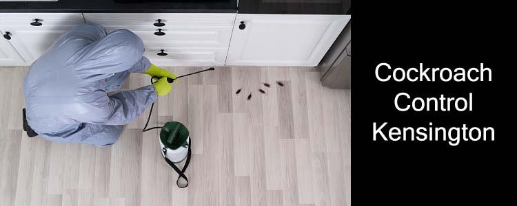 Cockroach Control Kensington